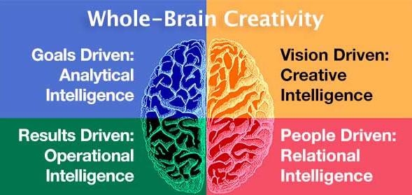 modello whole brain digital marketing