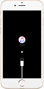 tutorial dfu iphone toni vizzi
