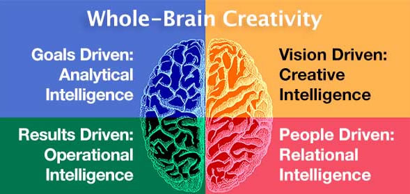 modello whole brain digital marketing